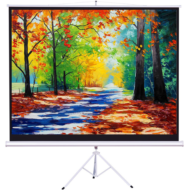 Good Quality OEM matte white portable tripod  projector screen