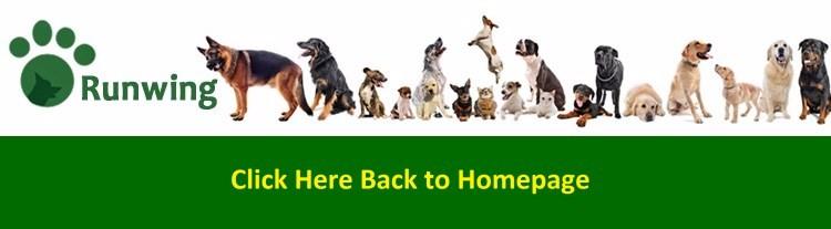 ソフト & 快適なペット犬首輪、縞模様ピンク/グレー/ベージュ金色の金属バックル & クリップ