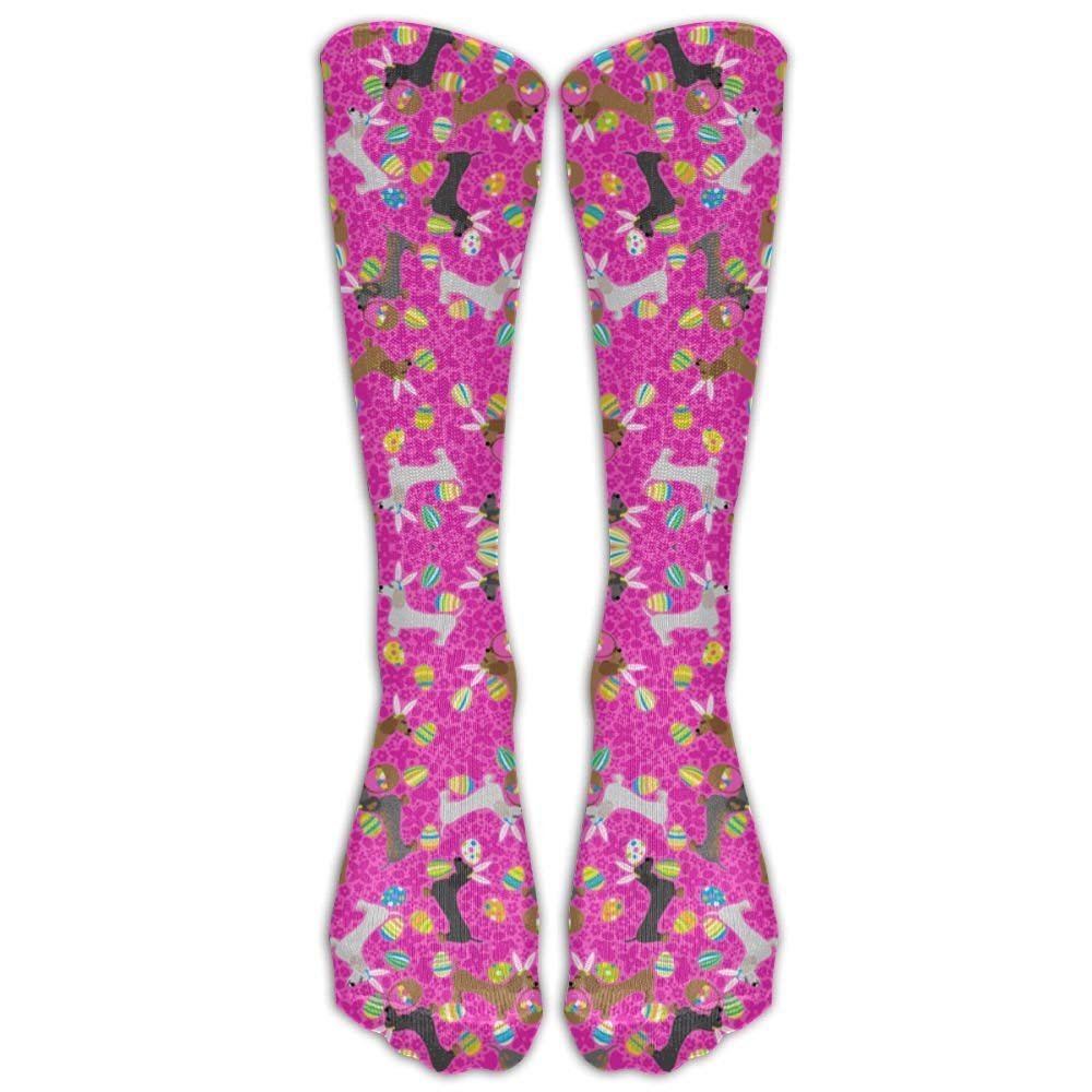 36bac7308da Get Quotations · Ghgbm 3D It s The Easter Dachshund (Pink) Stockings  Hip-hop Fashion Women s Stockings