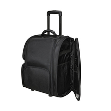 Professional Trolley Makeup Suitcase Travel with Removable Pouches