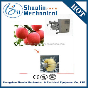 automatic stainless steel apple/peach peeling machine
