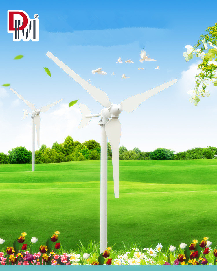 100W Wind Generator for Home Use Price
