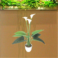 faux bulk silk single stem white Artificial Calla Lily flower potted plants