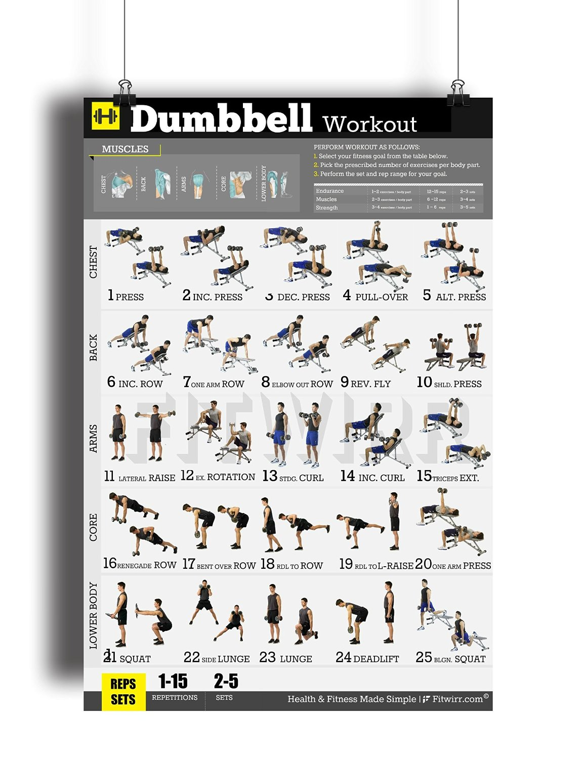 """Dumbbell Exercises Workout Poster - NOW LAMINATED - Home Gym - Workout Plans for Men - Free Weights - Strength Training Routines - Build Muscles - Fat Loss - Fitness - Bodybuilding Guide 18""""X24"""""""