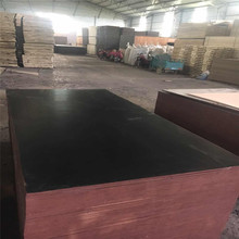 WBP glue 14mm thickness film faced building plywood for thailand