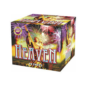 Hot selling wholesale 1'' 49 shots pyro cake fireworks with high quality