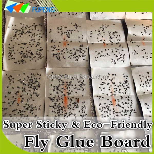 FUPENG Hot Sale very effective Insect Control Fly Glue Board