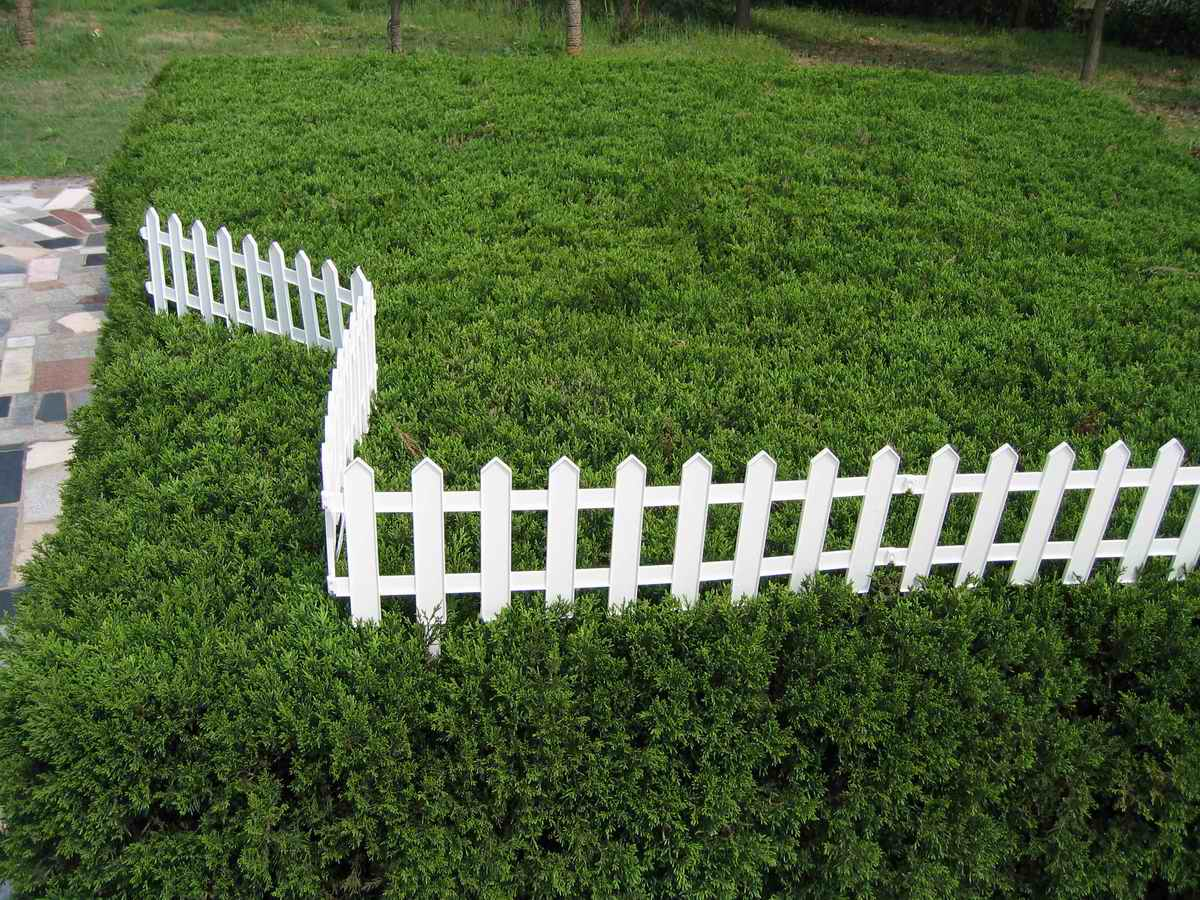 Lovely Plastic Garden Fence Buy Plastic Garden Fence Product On Alibabacom