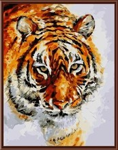 canvas painting by numbers animal tiger picture oil painting 2015 new hot photo GX6387