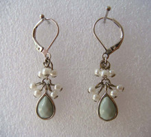 Pears Surrounded Silver Clip-on Earrings (Z03023c)