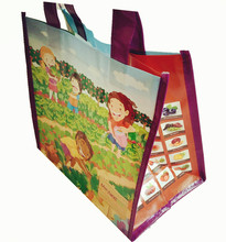 Eco Promotional Laminated PP Non-woven Bag Manufacturer Cheap Price