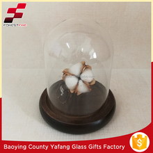 D8*H16cm Clear Glass Dome Home Decoration with Flowers