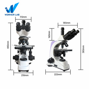 Laboratory Biological Fluorescent Trinocular Head Microscope