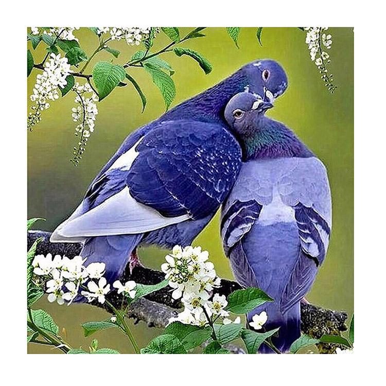 Картинки анимации с голубями, днем николая чудотворца