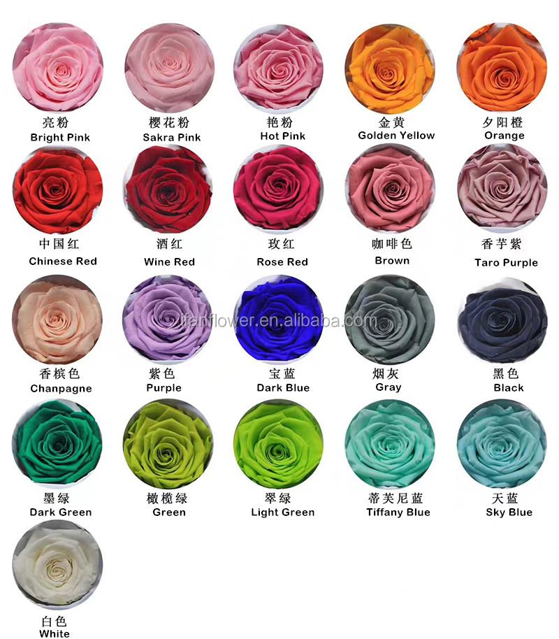 China Colores Toque Real Naturales Fresco Y Rosa Arco Iris Colorido