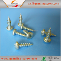 Pan head phillips drive self tapping screw