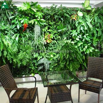Gros Artificielle Jardin Vertical Vert Plantes,Haie De Buis Mur ...