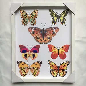 Classical butterflies picture decorative photo color wood frame