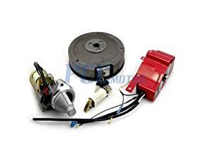 shiosheng Charging Coil for Honda GX390 GX340 GX270 GX240 GX200 GX160 E1800 2500 6500 7500 2KW-5KW Generator Charging Electric Start KIT