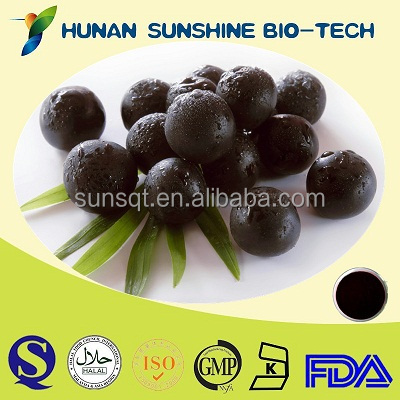 Euterpe Badiocarpa Extract Powder Acai berry Extract With High Quality And Best Price