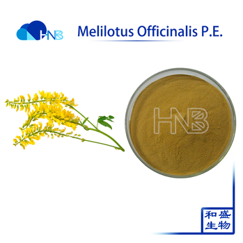 100% natural China suply Melilotus Officinalis Extract powder / Melilotus Officinalis P.E.