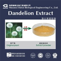 Plant extract powder Dandelion root extract powder