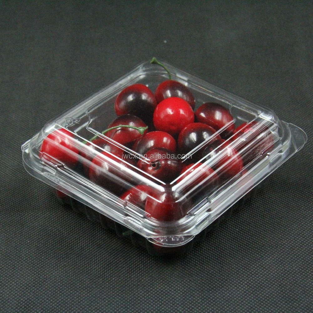 disposable fresh blueberry clamshell box