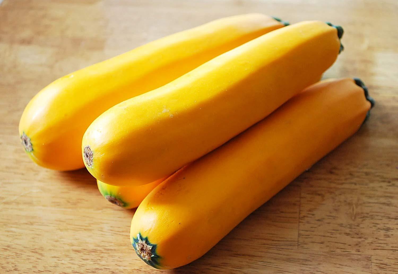 Summer Squash, Zucchini: Gold Rush Hybrid - Squash Seeds