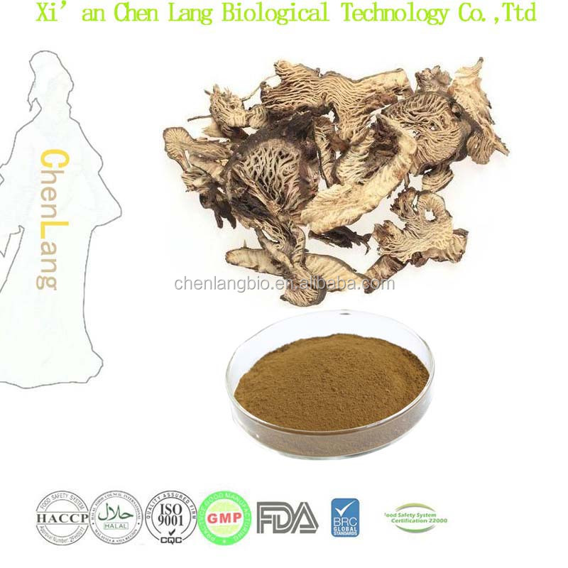 100% Natural Black Cohosh P.E. Main Contents Triterpenoid Saponis