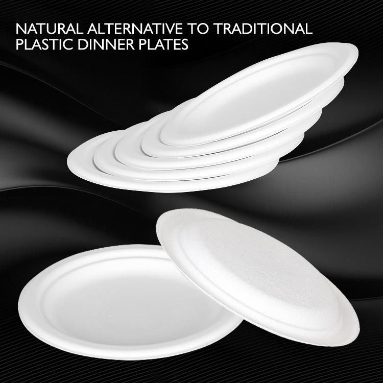 Biodegradable Disposable Tableware Biodegradable Disposable Tableware Suppliers and Manufacturers at Alibaba.com & Biodegradable Disposable Tableware Biodegradable Disposable ...