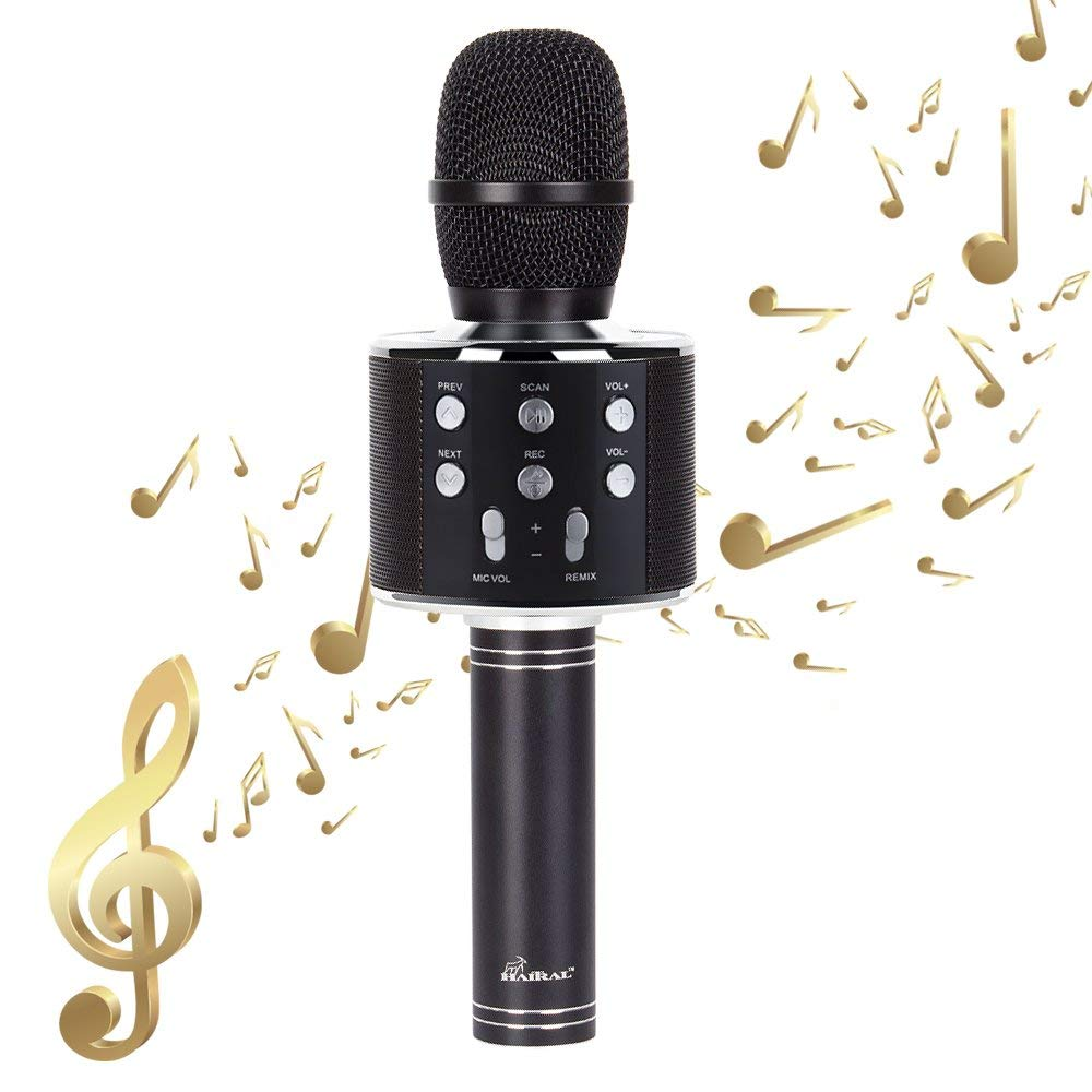 HAITRAL 3-in-1 Portable Bluetooth Speaker Machine Wireless Bluetooth Karaoke Microphone for Android/iPhone/iPad/PC, Black