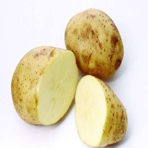 Authenticated GAP Potato Price In Dubai, Fresh Potato From Poland