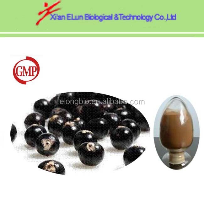 Elder flower extract 10:1 5:1 20:1 with top quality