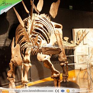 KAWAH Exibithion Life Size Stegosaurus Dinosaurs Fossils For Sale