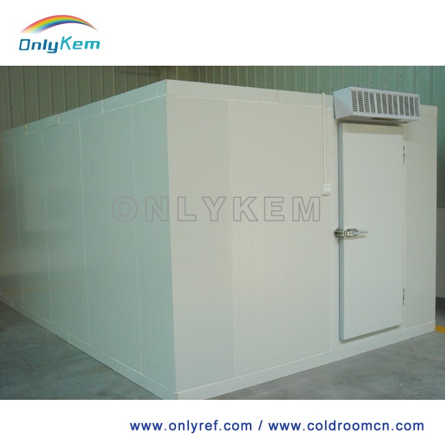 5000t tomato cold storage room , cold storage room for meat