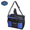 Disposable industrial ice wine lunch food cooler travel bag