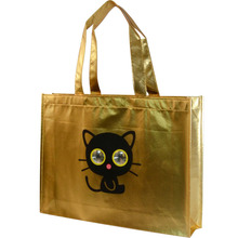 Laminited non woven cloth bag with charming images