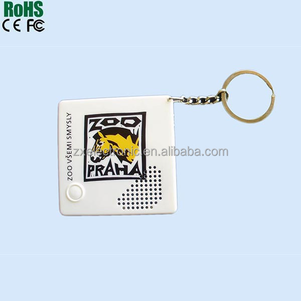 Mini Voice Recorder Keychain