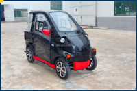 loudi dafenghe electric automobile for 1 or 2 persons