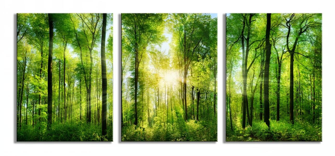 Youk-art Decor 3 Panels Morning Sunrise Green Trees Landscape Sunshine Over Forest Photograph Printed on Canvas for Home Wall Decoration