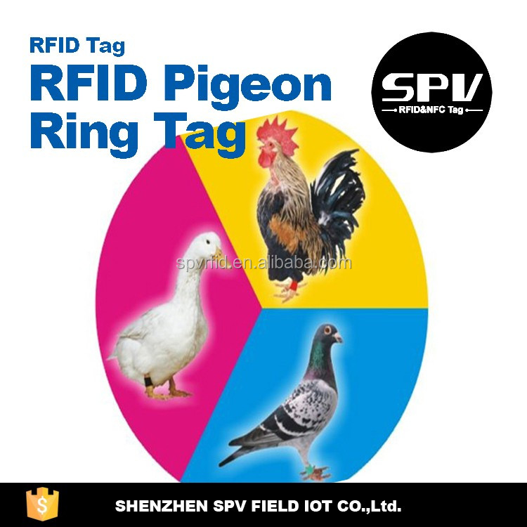 LF Pigeon Ring Tag Racing