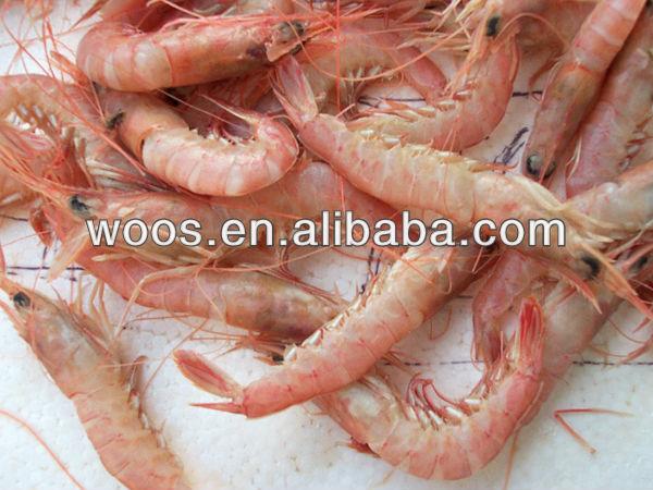 Frozen Red Sand Shrimp