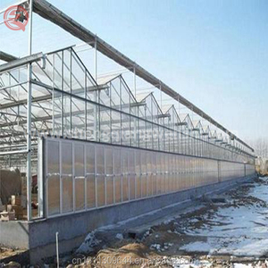Agricultural Multi Span Glass Greenhouse Used Glass Greenhouse