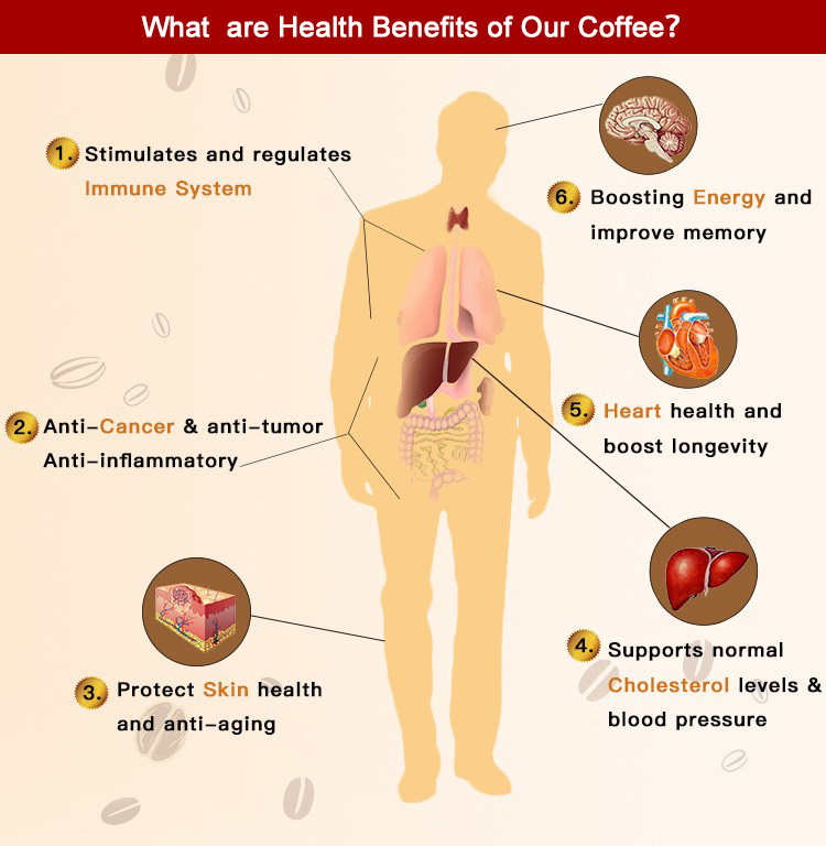 Ganoderma Instant Coffee 3 In 1 With Red Reishi