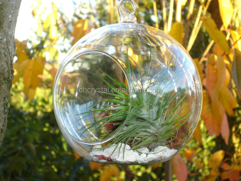 Great products quality,On-time delivery and efficient communication  services. - Mh-kx019 100 Wholesale Clear Ball Glass Christmas Ornament - Buy