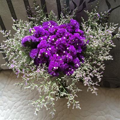 20 pcs 30 cm naturel fleurs s ch es multicolore myosotis sylvatica bouquet de fleurs pr serv. Black Bedroom Furniture Sets. Home Design Ideas