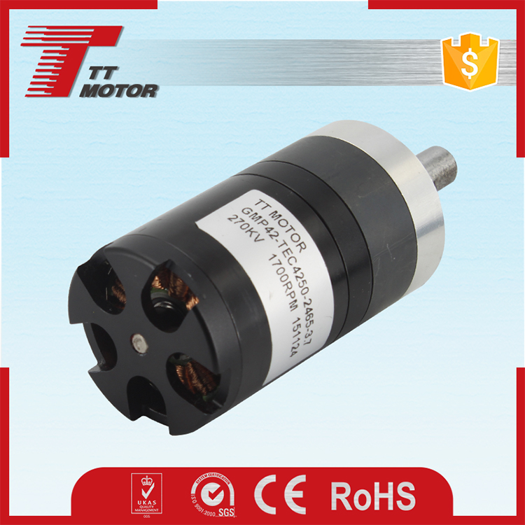High quality 24 dc brushless 100kg load motor