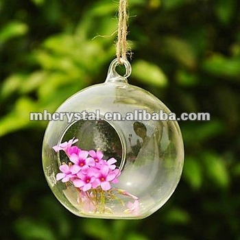 Ball Shaped Glass Hanging Vase Mh 12315 Buy Clear Glass Hanging
