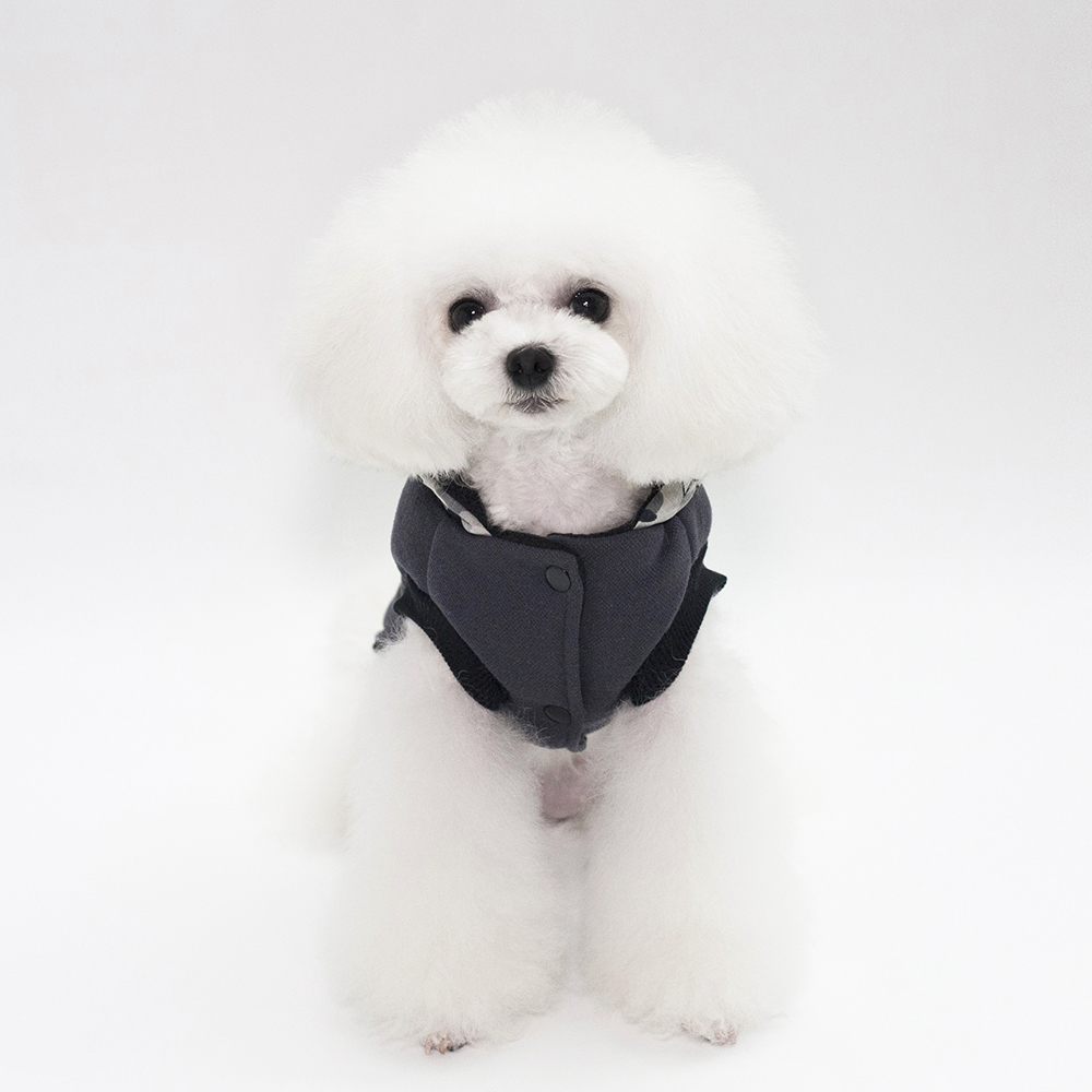 Lovoyager wholesale pet clothes with four legs winter cotton dog hoodie carton costumes dog clothes