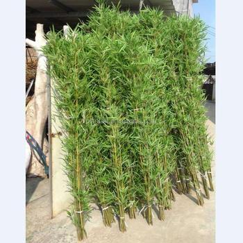 Guangzhou Shuyi Lifelike Artificial Bamboo Tree Chinese Bamboo
